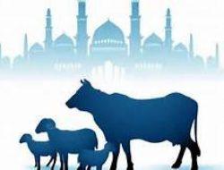 Tata Cara Sholat Idul Adha di Rumah dan Malam Takbiran 2021 Saat PPKM Darurat