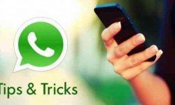 Bosan dengan Tulisan dengan Huruf Hitam di WhatsApp? Ingin Tulisan Berwarna? Ikuti Langkah Ini