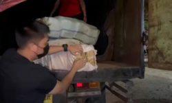 Peredaran 279 Kg Ganja Lintas Sumatra-Jawa Digagalkan Polisi